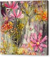 Floral Cosmos Acrylic Print