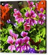 Floral Design 5 Dark Acrylic Print
