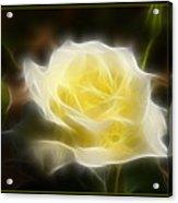 Floral Dream Acrylic Print