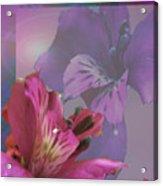 Floral Dust Acrylic Print