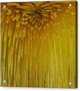 Floral Falls 5 Acrylic Print