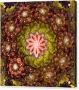 Floral Fractal Wreath  Acrylic Print