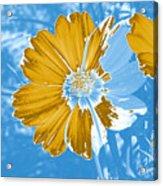 Floral Impression Acrylic Print