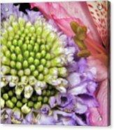 Floral Macro Acrylic Print