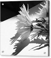 Floral No2 Acrylic Print