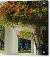 Floral Or Art Acrylic Print