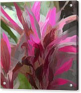 Floral Pastel Acrylic Print by Tom Prendergast