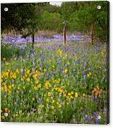 Floral Pasture No. 2 Acrylic Print
