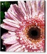 Floral Pink Creative Fragmented In Thick Paint Acrylic Print