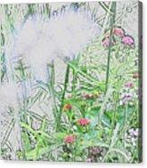Floral Sketch Acrylic Print