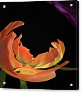 Floral Spring Tulips 2017 Abstract 01 Acrylic Print