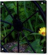 Floral Yellow Peek A Boo Acrylic Print