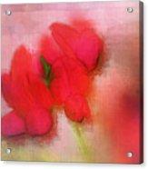Florentina - J38 Acrylic Print