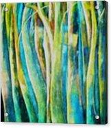 Floresta Verde  Acrylic Print
