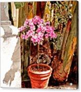 Floret Nouveau Acrylic Print