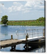 Florida Backwater Acrylic Print