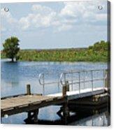 Florida Backwater Acrylic Print