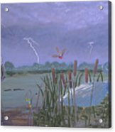 Florida Everglades Thunderstorm Acrylic Print