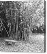 Florida Garden Scene_010 Acrylic Print