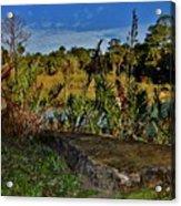 Florida Lands 6 Acrylic Print