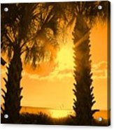 Florida Orange Acrylic Print