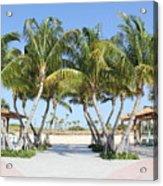 Florida Palms At Beach Acrylic Print