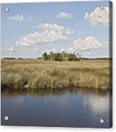 Florida Salt Marsh Acrylic Print