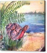 Florida Seacoast Acrylic Print