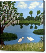 Florida Wetlands Acrylic Print