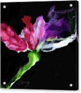 Flower In The Dark 3 Acrylic Print