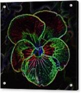 Flower 5 - Glowing Edges Acrylic Print