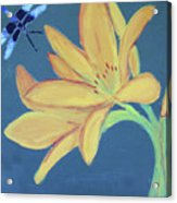 Flower And Insect Acrylic Print