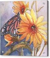 Flower And Monarch Acrylic Print