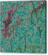 Flower Arches Acrylic Print