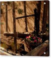 Flower Basket Acrylic Print