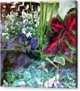 Flower Box Acrylic Print