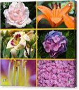 Flower Collage 1 Acrylic Print