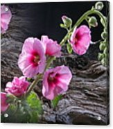 Flower Country Acrylic Print