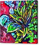 Flower Culture 295 Acrylic Print