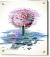 Flower Digital Art Acrylic Print