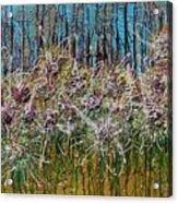 Flower Energy Acrylic Print