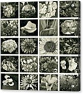 Flower Favorites Bw Acrylic Print