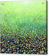 Flower Field Riot Acrylic Print