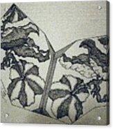 Flower Fossil Acrylic Print