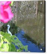 Flower Frame Acrylic Print