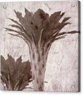 Flower-g Acrylic Print