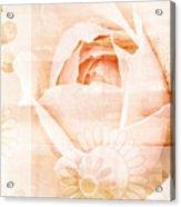 Flower Garden Acrylic Print by Frank Tschakert