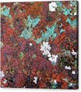 Flower Garden In The Rust Acrylic Print