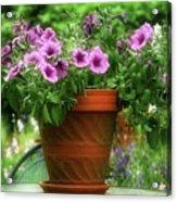 Flower Garden Pot Acrylic Print