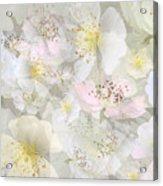 Flower Girls Path Acrylic Print